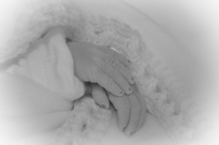 Elliott's hands